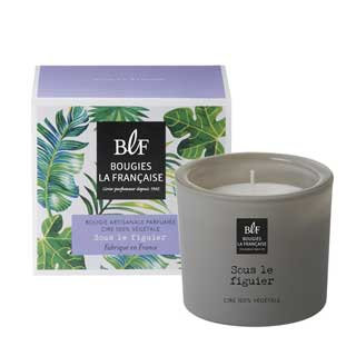 Fig Tree natural scented candle