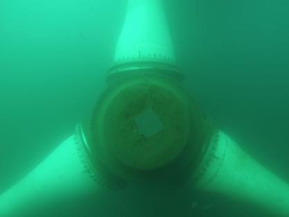 Rotor Baldes