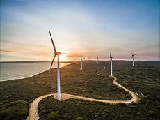 albany-wind-farm-5757a896654c0d6d6dbf047