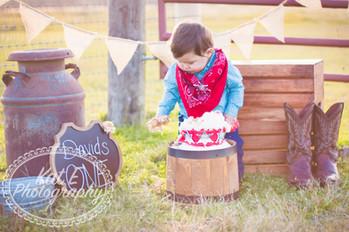 Cake Smash Photographer Houston, Tx