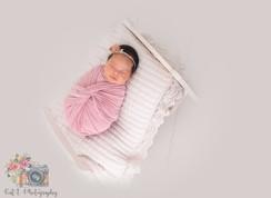 in studio newborn session