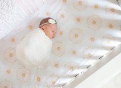 Lifestyle newborn session