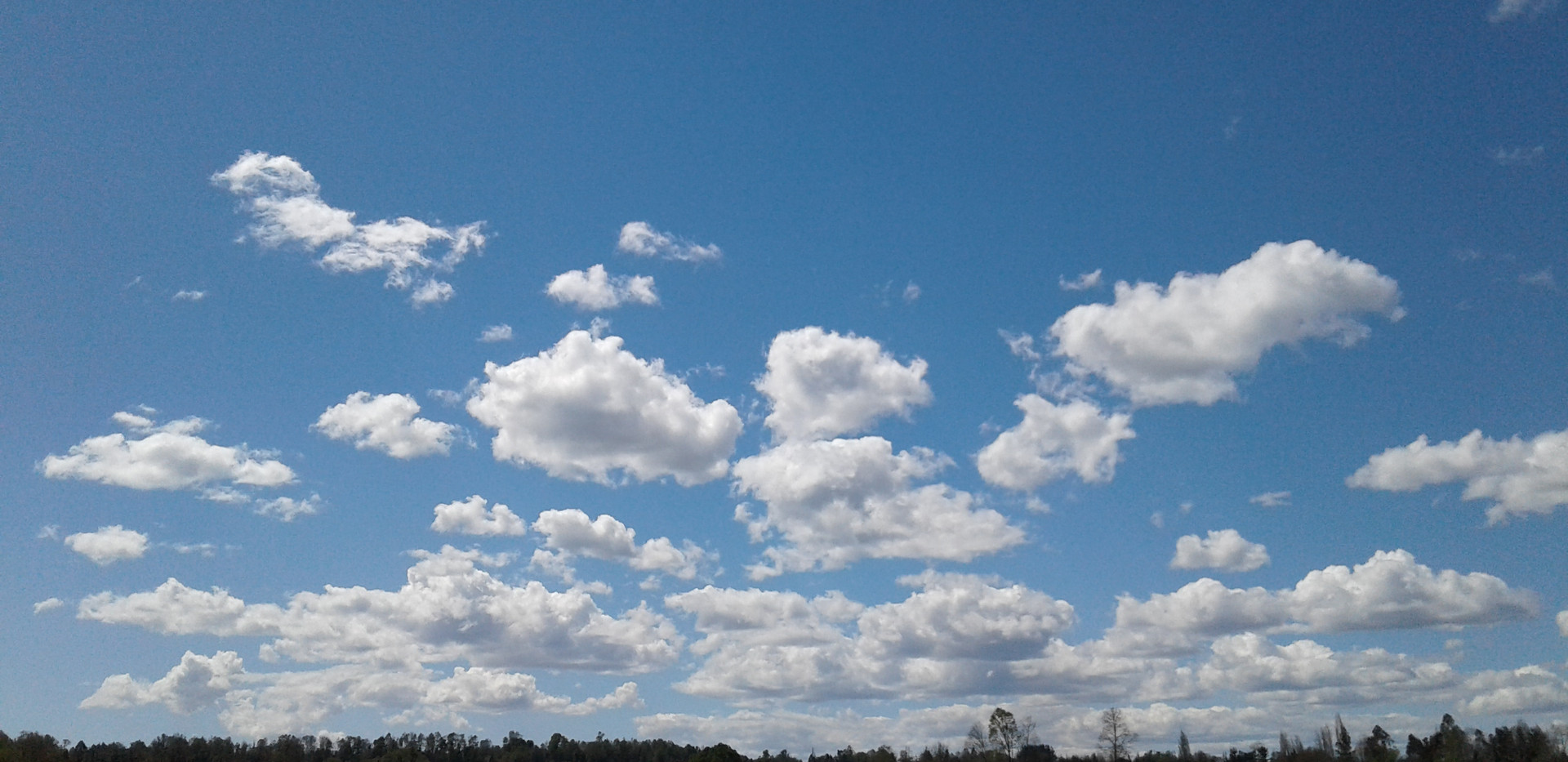 Cielo de la Araucania