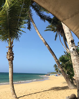 Deola AyurYoga - Beach AyurYoga, Curacao