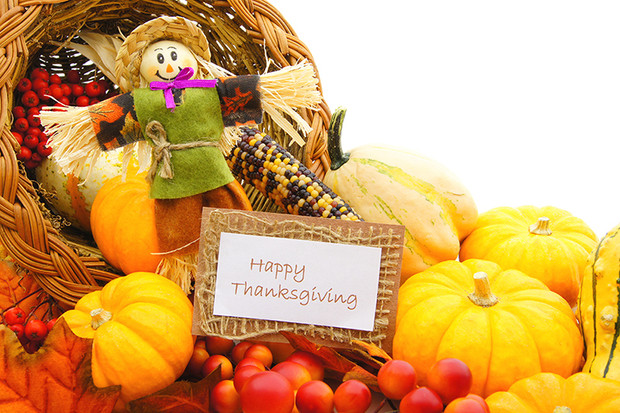 Happy Thanksgiving!  Thanksgiving Quotes, Sayings & Toasts