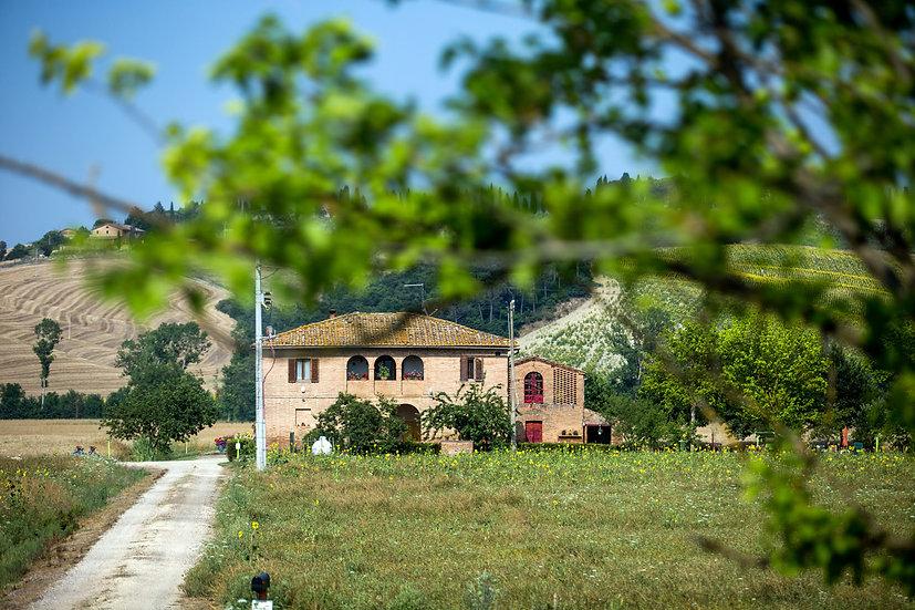 Tuscany #7