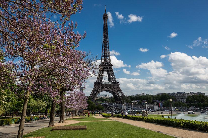 Eifel Tower #8