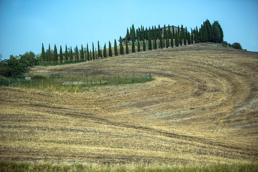 Toscany #1