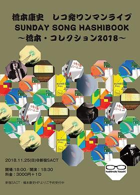 20181125ワンマンフライヤー.jpg
