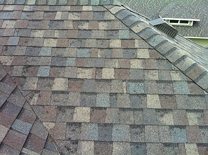 Roof Hail Damage