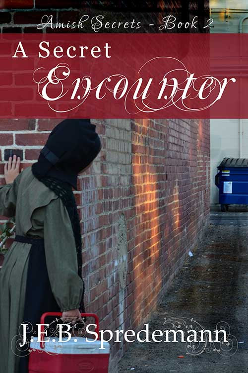 AS2-A-Secret-Encounter-book-cover.jpg