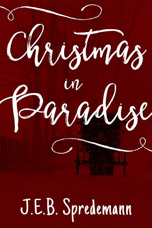 New-Christmas-in-Paradise-cover.jpg