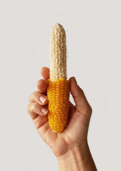 corn A3.png