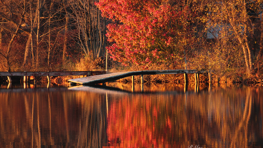A fall dock at Guilford Lake