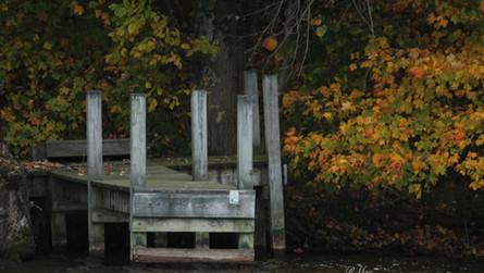 A peaceful dock