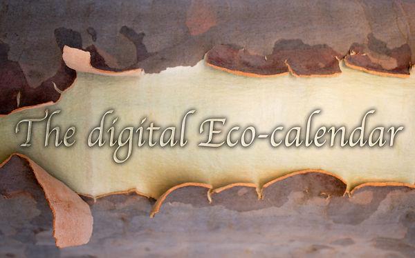 The Digital Eco-Calendar.jpg