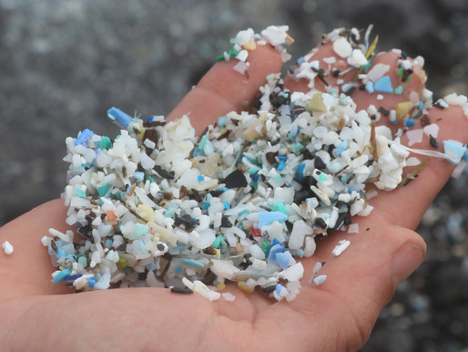 Would you eat plastic?