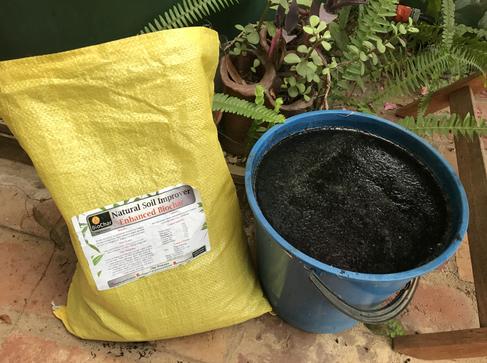Biochar + seaweed solution