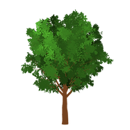 Badge Tree1.png