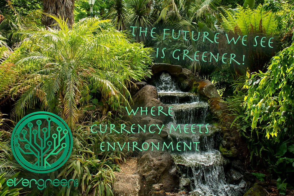 Where currency meets environment