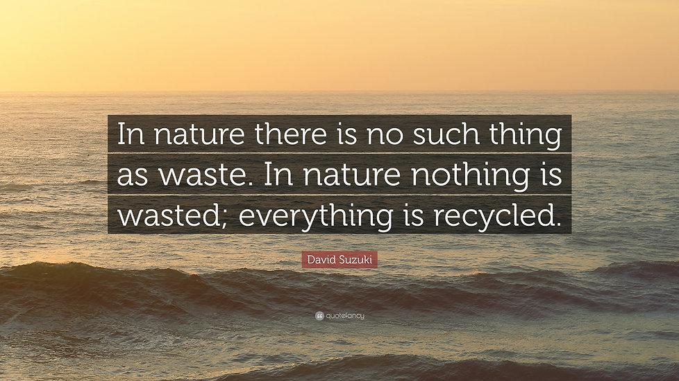 1984528-David-Suzuki-Quote-In-nature-the