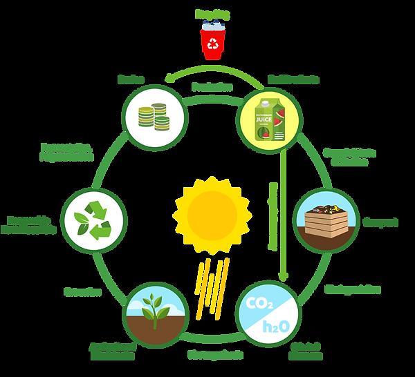 Bioplastics_Lifecycle.png