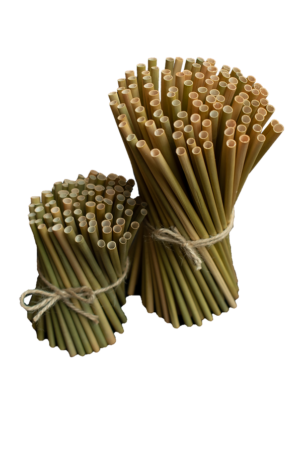 Green Straws Cocktail & Long.png