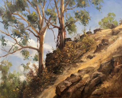 Loddon Escarpment, Glenluce