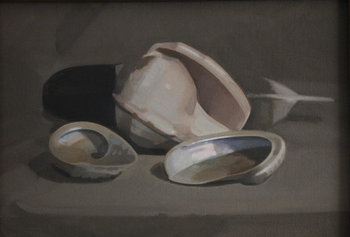 Shells and Feather