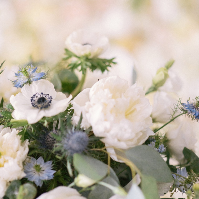 Peonies_Events_Blue_052.jpg