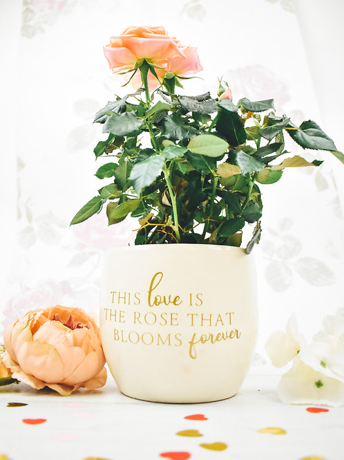 Rose Quote Flower Pot