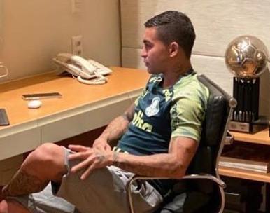 Novela Dudu agita o Palmeiras