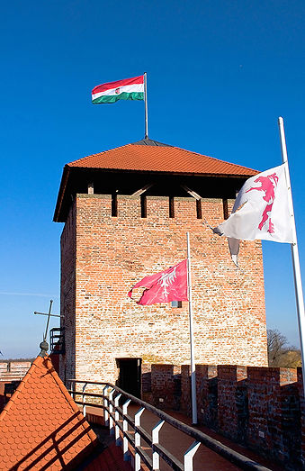Tower of the castle Gyula_800px.jpg