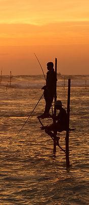 Koggala Beach - Stilt Fishing_vágott.jpg