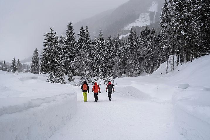Színek a hóban_1200px.jpg