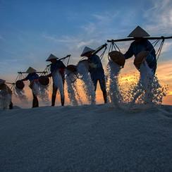 Salt farmers