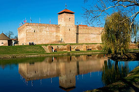 The castle of Gyula_700px.jpg