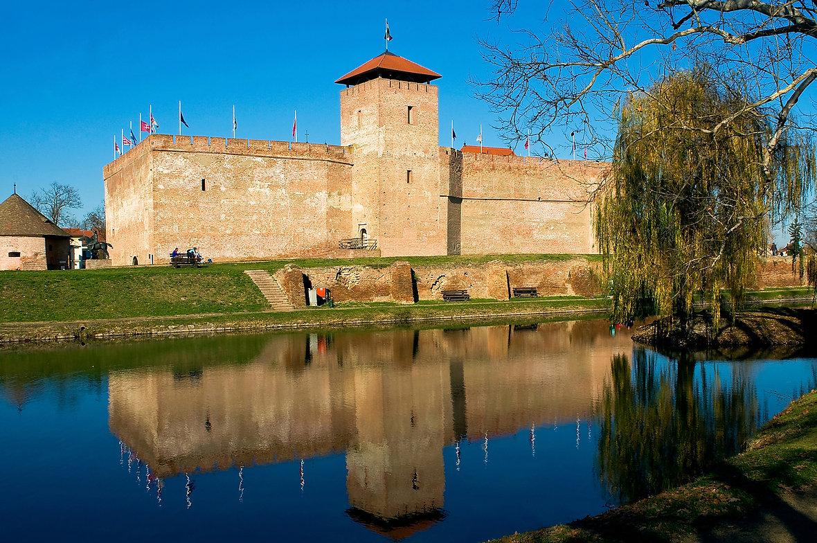 The castle of Gyula_GO.jpg