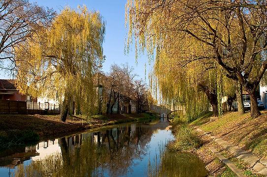 The_riverside_of_Körös_in_Gyula_800px.jp