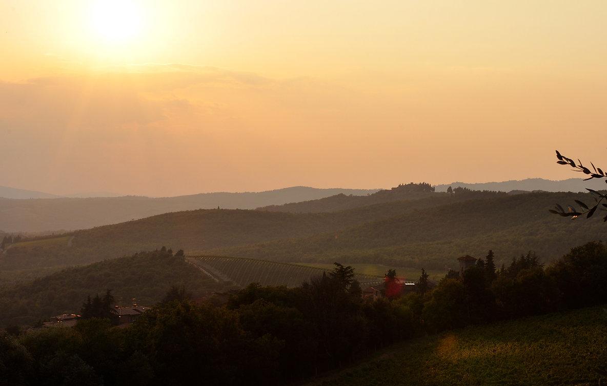 Landscape - Chianti di Borgo - 2000px.jpg