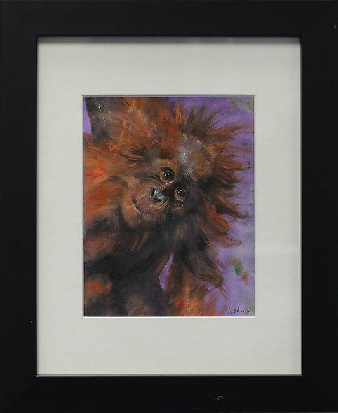 """Cheeky Monkey"" by Kevin Adams"