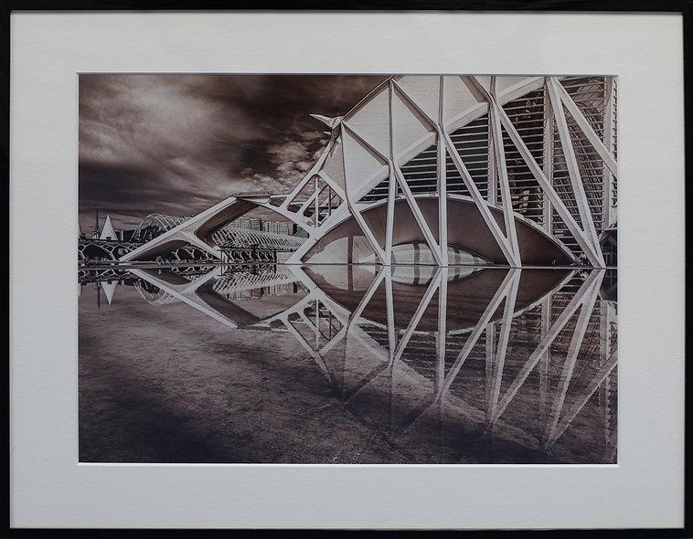 """Valencia City of Arts and Sciences 1"" by Cristina Pascu-Tulbure"