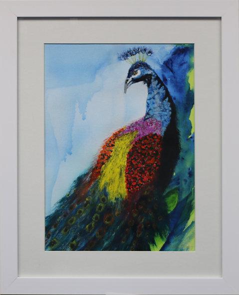 """""""Peacock"""" by Pauline Murphy"""