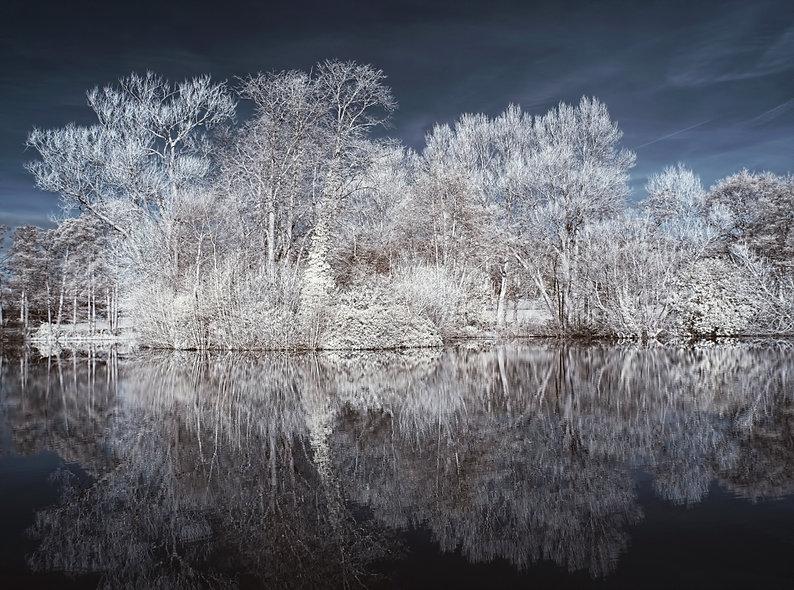 """""""Burton Mere Wetlands"""" by George Evans"""