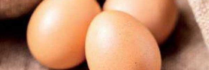 ISE EGG Sanitized Vitamin-E