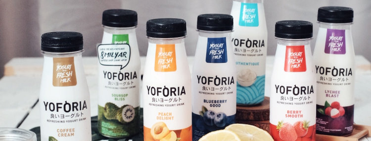 Yoforia Blueberry Goods 200ml