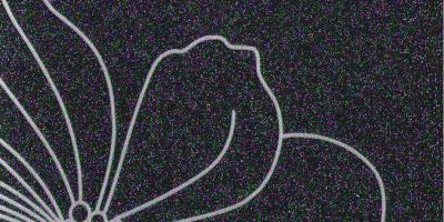 Ночная фиалка глянец DR 082-6T