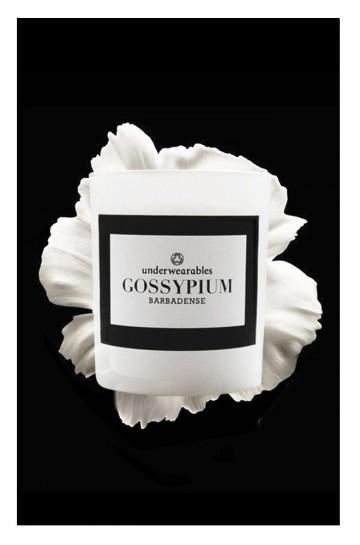 gossypium_2
