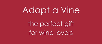 Adopt a Vine.png