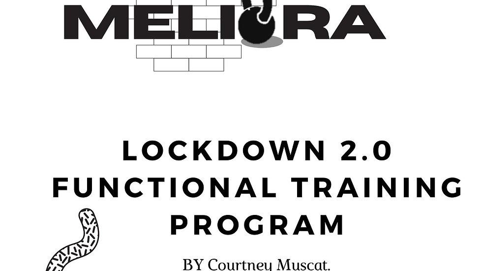 LOCKDOWN 2.0 FUNCTIONAL PROGRAM